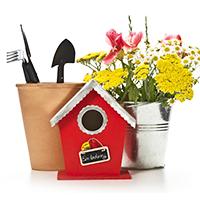 花・ガーデン・DIY工具の画像
